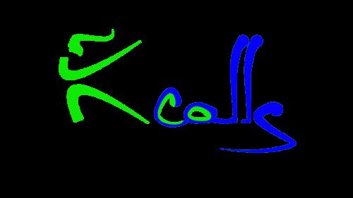Tarptautiniai Jaunimo mainai Ecocalls